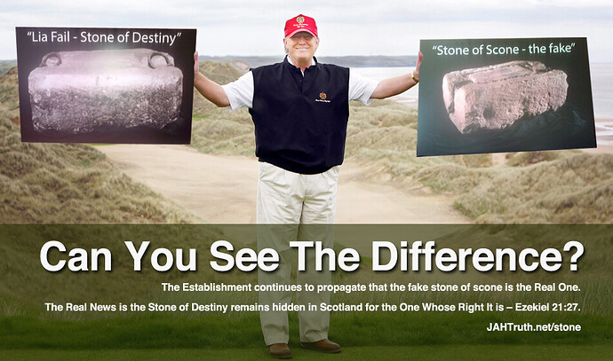 Donald Trump Two Stones Posters