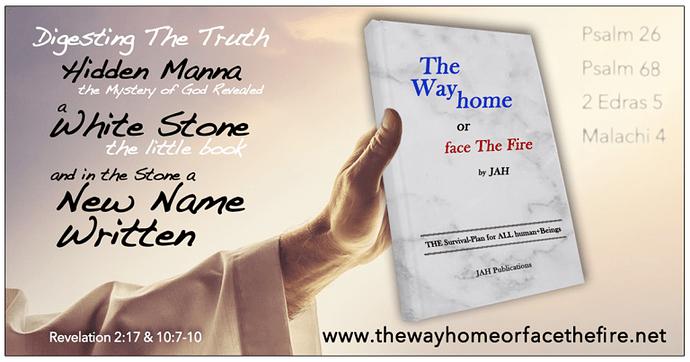 the-little-book-of-revelation