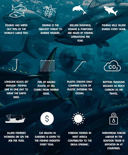 Seaspiracy Stats