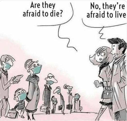 Afraid to live