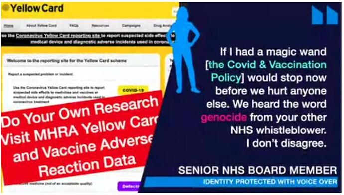 Senior NHS Board Member Whistleblower contacts UK Column